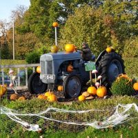 Fishers Farm Park Halloween Happy Hauntings Driveway Tractor decorated for Halloween