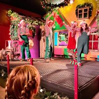 Fishers Farm Park Magical Christmas Show